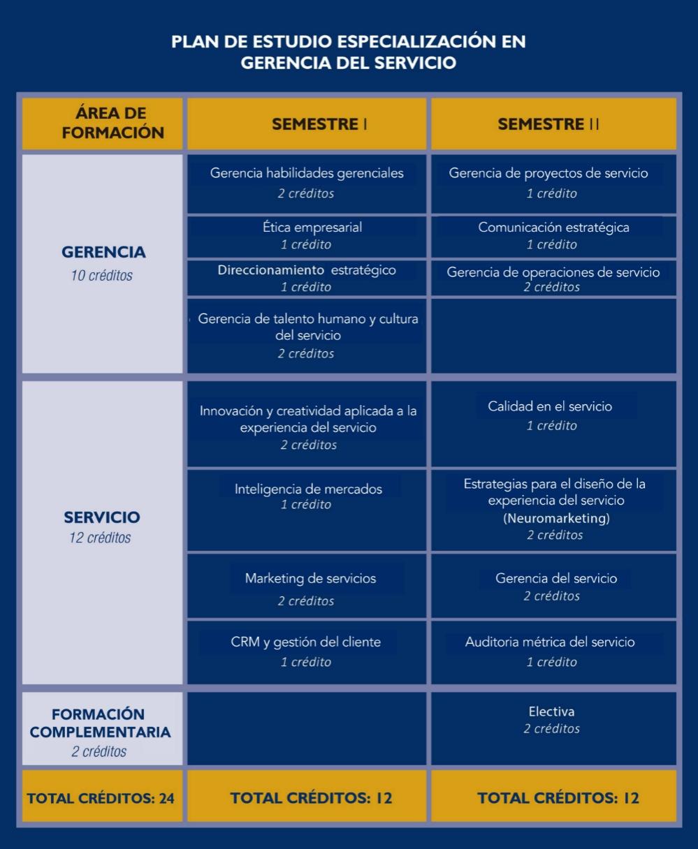 Plan de Estudios - Gerencia del Servicio
