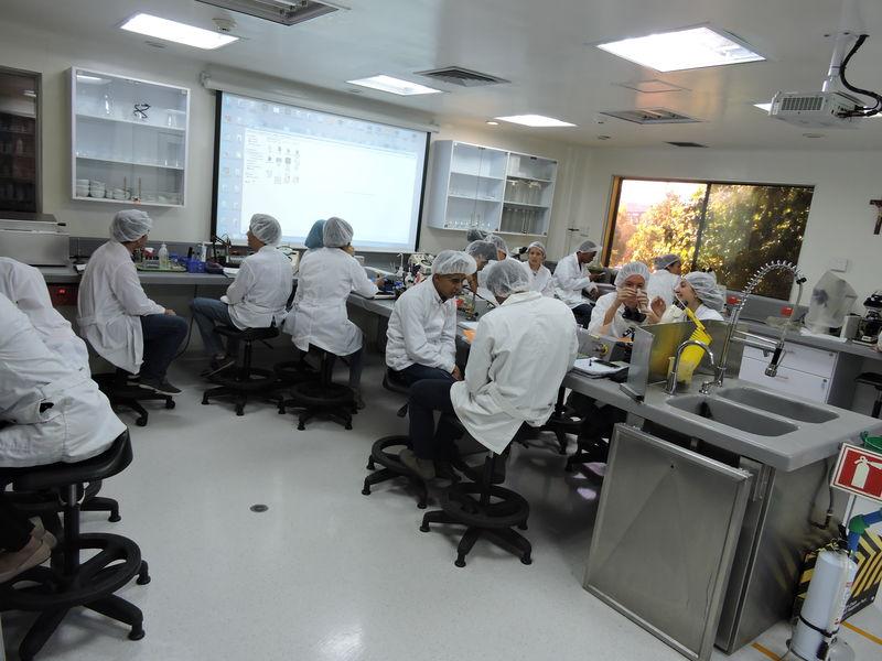 Laboratorios Licenciatura en Ciencias Naturales