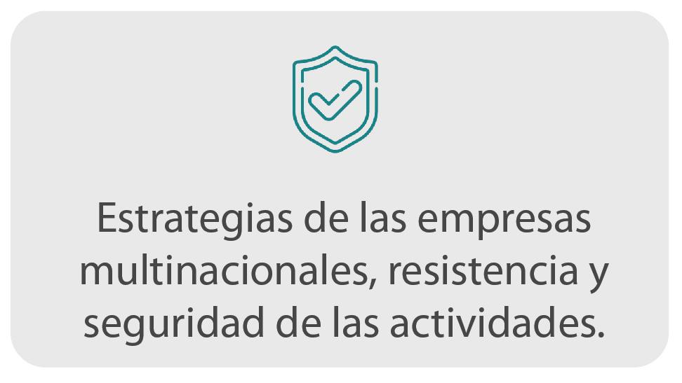 Estrategias de las empresas multinacionales
