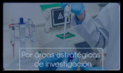 Areas estrategicas de investigacion