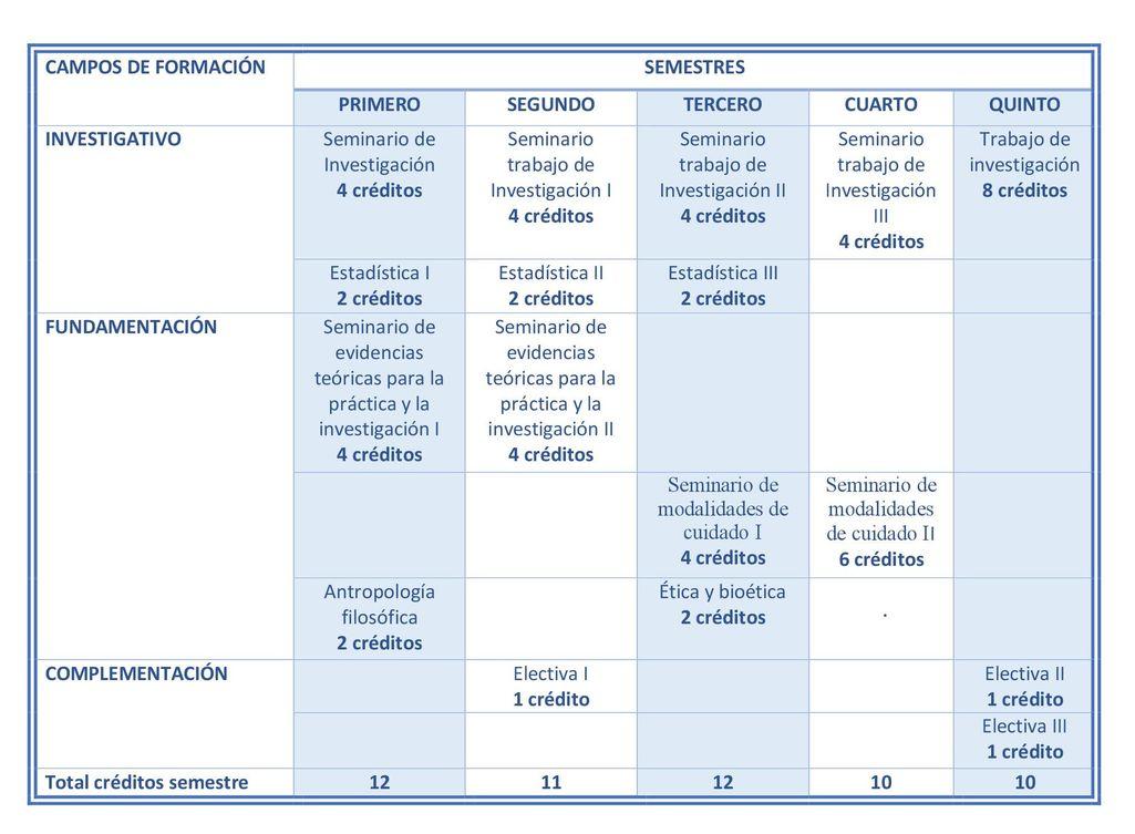 Plan de Estudios de la Maestría en Enfermería Modalidad Virtual, Universidad de La Sabana