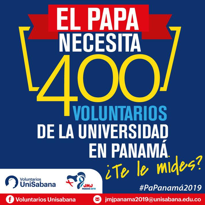 Voluntariados para el papa