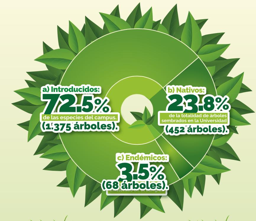 Infografía , total arboles