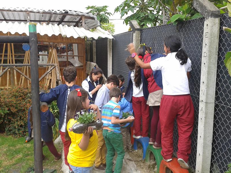 Práctica educación ambiental